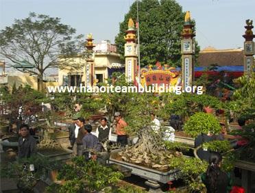 Hoi hoa vi khe, vietnamteambuilding, hanoi teambuilding, viet nam teambuilding