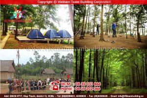 Khu dã ngoại Sơn Tinh Camp: địa điểm tổ chức teambuilding tại Hà Nội