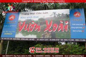 Địa điểm tổ chức teambuilding tại Hà Nội: Vườn Xoài Đông Anh